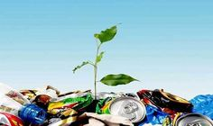 Know the importance of waste recycling to save environment. Important tips to remember about waste disposal in Dartford and its advantages. Benefits Of Recycling, Recycling Facts, Paper Recycling, Recycling Services, Recycling Programs, Medical Waste Management, Puerto Rico, Green News, Planets