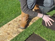 Our Sydney Turf Laying contractor brings up some affordable rates so that customers can afford the service and craft a fine-looking landscape around his/her property. Sydney, Landscape, Craft, Creative Crafts, Scenery, Do Crafts, Landscape Paintings, Needlework, Crafting