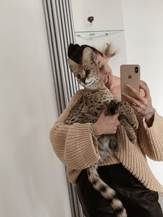 Leopard Cat, Cat Photography, Fat Cats, Adorable Animals, Adoption, Aesthetics, Kitty, Pets, Character