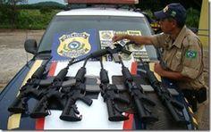 Armas de Waldemiro Santiago