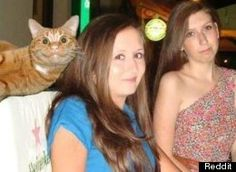 125 Animal Photobombs. I only got as far as #12 and could NOT stop laughing!  Animals are the best!!