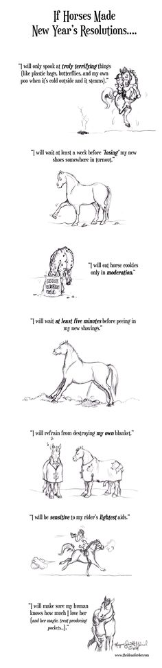 If Horses Made New Years Resolutions- HorseNation too bad I don't have one lol :(