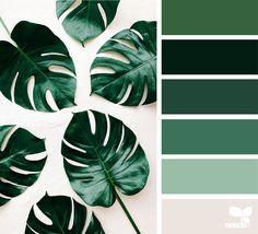 Botanical Hues - https://www.design-seeds.com/in-nature/nature-made/botanical-hues-3