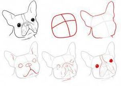 """Determine more information on """"French Bulldog Puppies"""". Look at our internet site. Boston Terriers, Boston Terrier Love, Terrier Puppies, Corgi Puppies, French Bulldog Drawing, Dog Steps, Online Drawing, French Bulldog Puppies, Animal Drawings"""