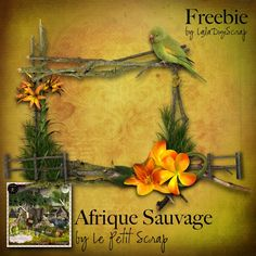 Cluster freebie made with Afrique Sauvage by Le Petit Scrap #DigiScrap
