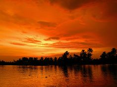 Backwater, Kerala, India by del drago, via Flickr