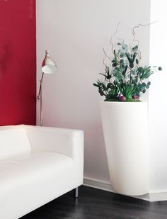 Design végétal, plantes stabilisées.Création et réalisation Adventive. Interior plant Designer #serralunga