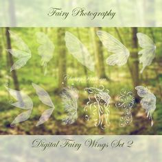11 Fairy Wings Photoshop OVERLAYS Set 2 by FairyPhotography