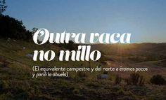 18 frases gallegas que el resto de España necesita aprender Osho, Mr Wonderful, Sarcasm, 1, Humor, My Love, Quotes, Mahatma Gandhi, Dalai Lama
