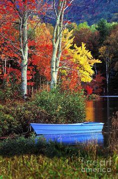 ✯ Autumn - Lake Megunticook