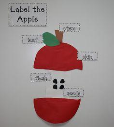 Label the Apple