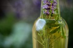 four thieves vinegar --French folklore says this remedy could cure the Bubonic plague
