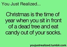 You Just Realized... Christmas is the time of year when you sit in front of a dead tree and eat candy out of your socks.
