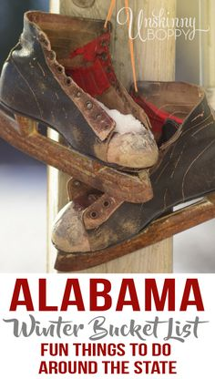 Alabama Winter Bucket List!  Things to do in Alabama in the winter.  I've spent almost 40 years driving the backroads looking for the best things to do. These days I try to find things that are fun for mykids, too. On this first day of winter, it's time to get out there and  {Read More}