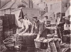 "A wonderfully sharp vintage photo of fish being packed in St Ives some time around the turn of the century. I'm pretty sure the fish are mackerel, although the main fish historically would have been pilchards.These would have been landed by the St Ives fishing fleet with its unique ""jumbo"" luggers."