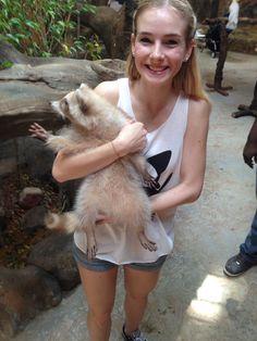 Baby racoon, zoo, Kuala Lumpur, Malaysia