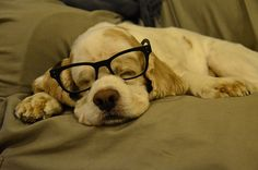 We're all guilty of sleeping with our glasses on.