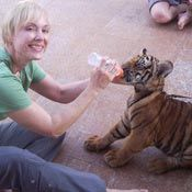 NEW GOAL - go to Bangkok and feed baby tigers....this needs to happen