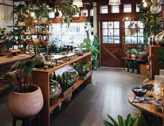 Tips In Structuring Your Little Greenhouse – Greenhouse Design Ideas Flower Shop Interiors, Greenhouses For Sale, Boutique, Greenhouse Interiors, Greenhouse Plans, Plant Nursery, Garden Nursery, Garden Shop, Indoor Plants