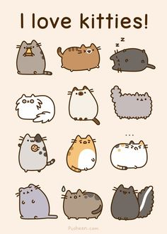 Persians, Spotted, Brown, Siamese, Tabby, Tortoiseshell, Scottish fold and Ginger kitties.   (and Pusheen, Stormy, and skunk-cat)