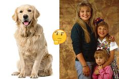 All you need to know about pets for kids people in one place! Dogs And Kids, Animals For Kids, Personality Quizzes For Kids, Personality Types, Best Buzzfeed Quizzes, Fun Quizzes To Take, Animal Quiz, Playbuzz Quizzes, Interesting Quizzes