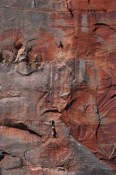 Sandstone cliffs at Zion National Park, U.S.A. - Photo: Dan Mahr/Flickr