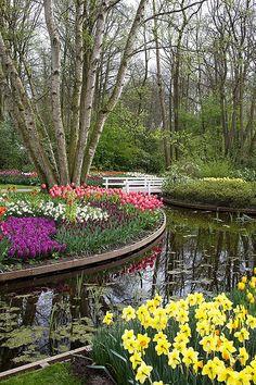 Keukenhof Park - The Netherlands