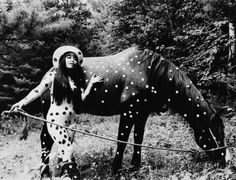 Horse play-Yayoi Kusama