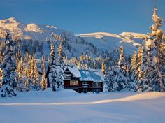 You won't find deep discounts around Christmas, but the U.S.-Canada exchange rate is favorable for Americans, so British Columbia might be more enticing for skiers than a few years ago. If you're feeling adventurous, book a $500 roundtrip ticket on Philippine Airlines from JFK, even between Christmas and New Year's. (The flight continues to Manila.) The popular ski town of Whistler is nearly sold out in late December, but you try the Hilton Whistler Resort