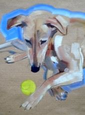 Sally Muir dog portraits