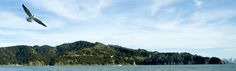 Angel Island State Park.  There's no need to drive hours into the mountains to go camping. Just a short ferry ride from the city Angel Island has some great campsites and amazing panoramic views of the city and bay.