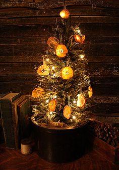 Orange slices on Primitive Twig tree