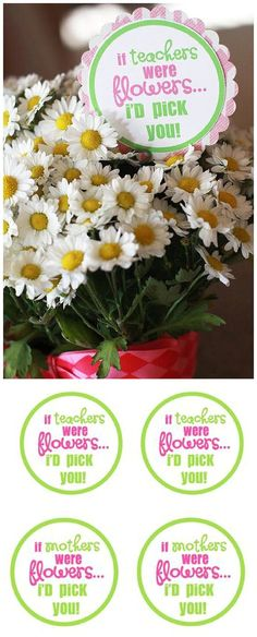 """EASY Last second Teacher Appreciation Week or Mother's Day gift idea!  FREE PRINTABLE TAGS """"If Teachers / Mothers were flowers.... I'd pick you!"""""""