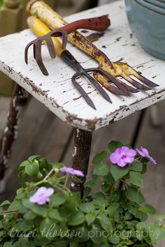 Old garden tools, I do have 2 old *diggers*, but they aren't like these.