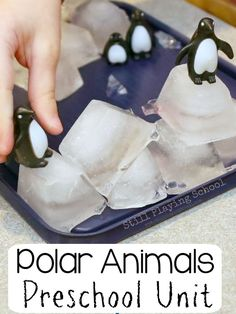 The ultimate polar animals preschool theme unit for kids!