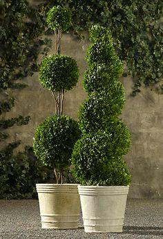 Restoration Hardware – Preserved Boxwood Topiary