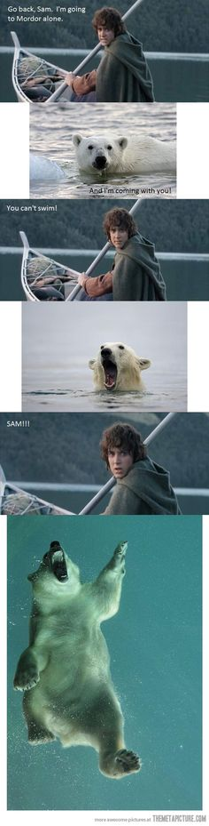 Samwise the Bear