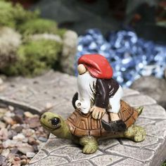 Miniature Fairy Gardens | Miniature Garden Gnome on Turtle - Fairy Garden Miniatures - Dollhouse ...