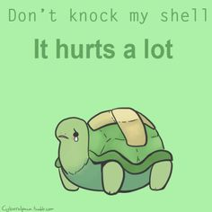A turtle's shell is its backbone. Knocking its shell is like someone hitting your spine.