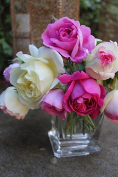 I have an appreciation for traditional and simple. I mean, can you imagine how wonderful these must smell?!