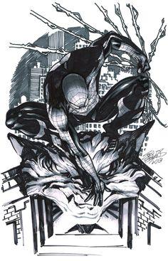 Spider-man by Eddy Barrows