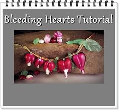 Bleeding Heart Drop Focal Lampwork Glass Tutorial von marylockwood