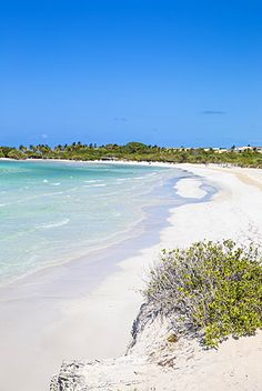 Cayo Coco Beach A Paradise Island In Cuba Watch Http Destinations For Travelers Blo Br 2017 12