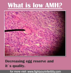 Low AMH Levels : How to Protect Your Fertility and Get Pregnant Naturally. Help Me Get Pregnant Pills Getting Pregnant With Twins, Ways To Get Pregnant, Ivf Treatment, Infertility Treatment, All About Pregnancy, Pregnancy Tips, Fertility Doctor, Fertility Cycle, Boost Fertility
