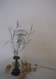 this woman's work is amazing, so many sculptures done in wire...website in french, defo need to browse more of her work