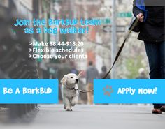 DOG WALKER NEEDED   UP TO $18.2/HR   BARKBUD DOG WALKERS How To Apply, Dogs, Animals, Animaux, Doggies, Animal, Animales, Pet Dogs, Dog