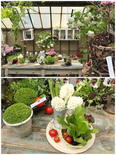 cute little greenhouse | in zona tortona once again so much greenery everywhere beautiful