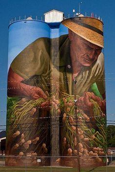 Birdsong Peanut Co. Painted Silo by The Suss-Man (Mike) amazing street art Sidewalk art. Murals Street Art, 3d Street Art, Street Art Graffiti, Street Artists, Banksy, Amazing Street Art, Amazing Art, Trompe L Oeil Art, Art Du Monde