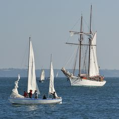   La vie en bleu et blanc   Goélette et Mentor à Brest, dans la rade, devant le port du Château.