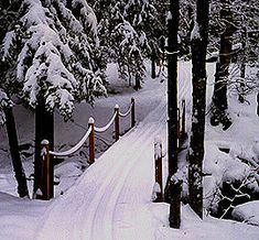 XC Skiing and Snowshoeing in New York - Catskill Mountains Ski - Mountain Trails Cross Country Ski Center - Outdoor Activies